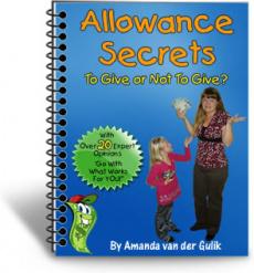 Ebook cover: Allowance Secrets
