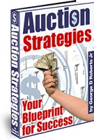 Ebook cover: Auction Strategies