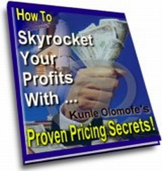 Ebook cover: Pricing for Big Money