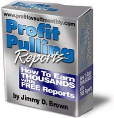 Ebook cover: How to Write Profit Pulling Reports