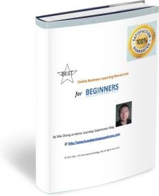 Ebook cover: Best Online Business Learning Resources for Beginners
