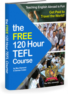 Ebook cover: The Free 120 Hour TEFL Course