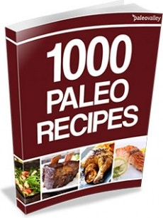 Ebook cover: 1000 Paleo Recipes