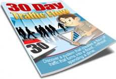 Ebook cover: 30 Day Traffic Flow