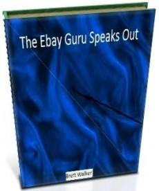 Ebook cover: The Ebay Guru Speaks Out