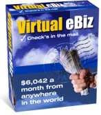 Ebook cover: Virtual eBiz
