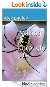 Ebook cover: Making it through Life