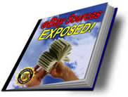 Ebook cover: ebay Sources EXPOSED