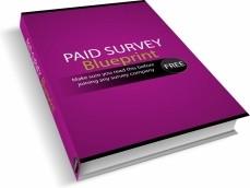 Ebook cover: Paid Surveys Blueprint