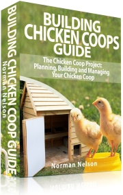 Ebook cover: Building Chicken Coops Guide