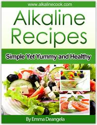 Ebook cover: Alkaline Gourmet Package