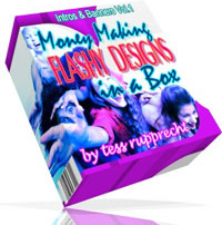 Ebook cover: Money Making Flashy Designs in a Box