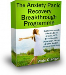 Ebook cover: 7-Week Anxiety Panic Recovery Programme