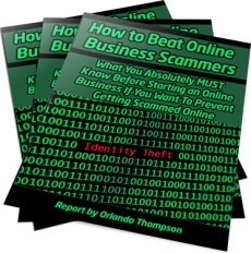 Ebook cover: How to Beat Online Business Scammers