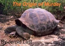 Ebook cover: The Origin of Murder