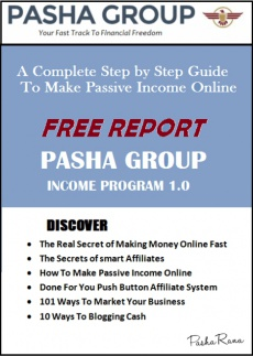 Ebook cover: Pasha Group Income Program Report