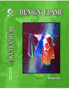 Ebook cover: Benign Flame