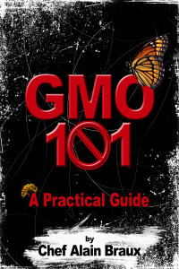 Ebook cover: GMO 101 – A Practical Guide