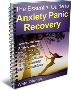 Ebook cover: The Essential Guide To Anxiety Panic Recovery!