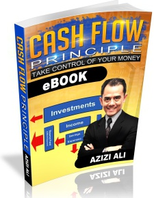 Ebook cover: The Cash Flow Principle
