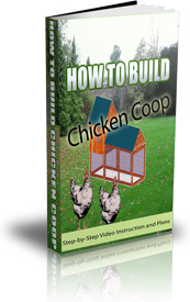 Ebook cover: Chicken Coop Plans