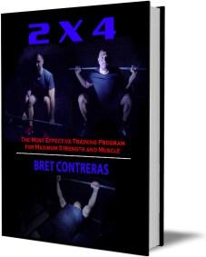 Ebook cover: 2 x 4 Maximum Strength