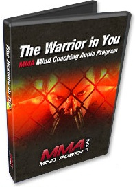 Ebook cover: The Warrior in You