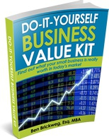 Ebook cover: The Do-It-Yourself Business Value Kit