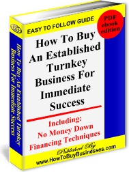Ebook cover: How To Buy An Established Turnkey Business For Immediate Success