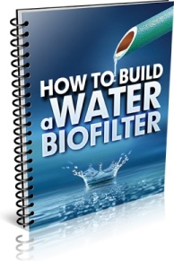 Ebook cover: How To Build a Water Biofilter