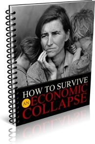 Ebook cover: Surviving an Economic Collapse