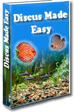 Ebook cover: Discus Made Easy