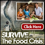 Ebook cover: Survive Any Food Crisis
