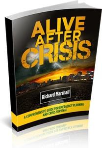 Ebook cover: Alive After Crisis