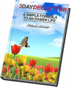 Ebook cover: The DeCarlo DeClutter System