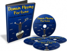 Ebook cover: Domain Flipping Fortune