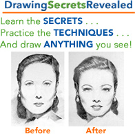 Ebook cover: Learn to Draw Like a Pro