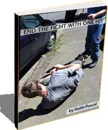 Ebook cover: How to End the Fight with One Hit