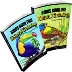 Ebook cover: Birds Colouring Books