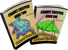 Ebook cover: Crawly Creepers Colouring Books