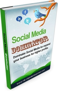 Ebook cover: Social Media Dominator