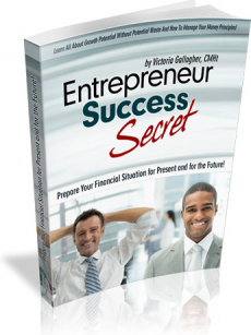 Ebook cover: Entrepreneur Success Secret