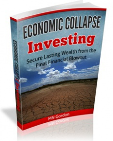 Ebook cover: Economic Collapse Investing