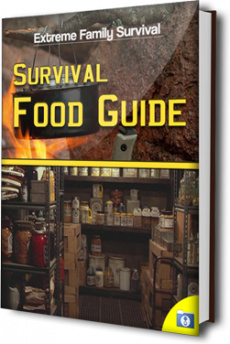 Ebook cover: The Survival Food Guide