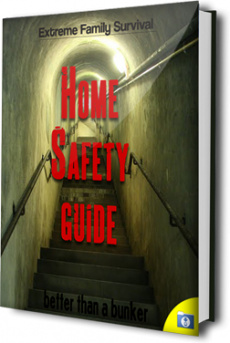 Ebook cover: The Home Safety Guide