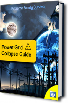 Ebook cover: The Power Grid Collapse Guide