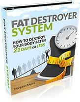 Ebook cover: Fat Destroyer System
