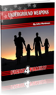 Ebook cover: Fight 4 Family