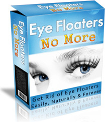 Ebook cover: Eye Floaters No More