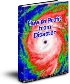 Ebook cover: How to Profit from Disaster
